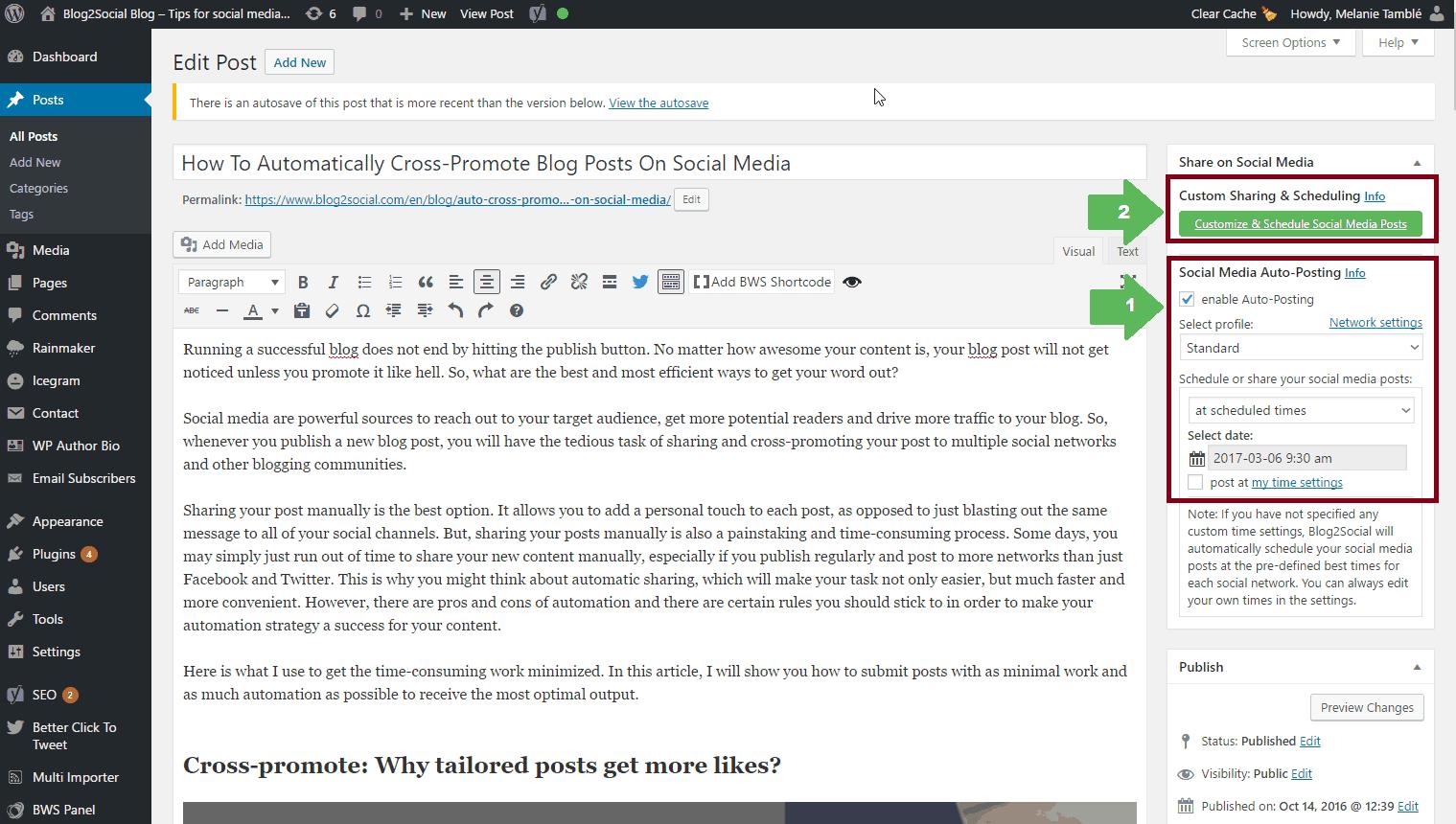 Blog2Social Plugin - Posting on Social Media Platforms